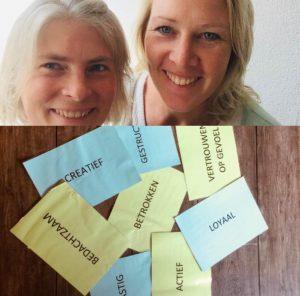 Coachin Healing Blikverruimers rosa Groningen Drenthe Friesland