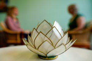 coahing healing Groningen Drenthe Friesland Rosability